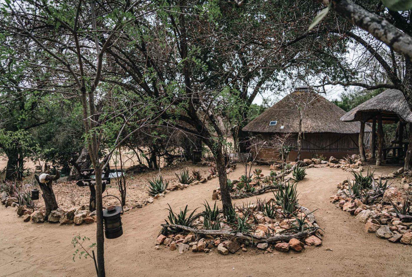 Umlani Bushcamp, Timbavati Nature Reserve