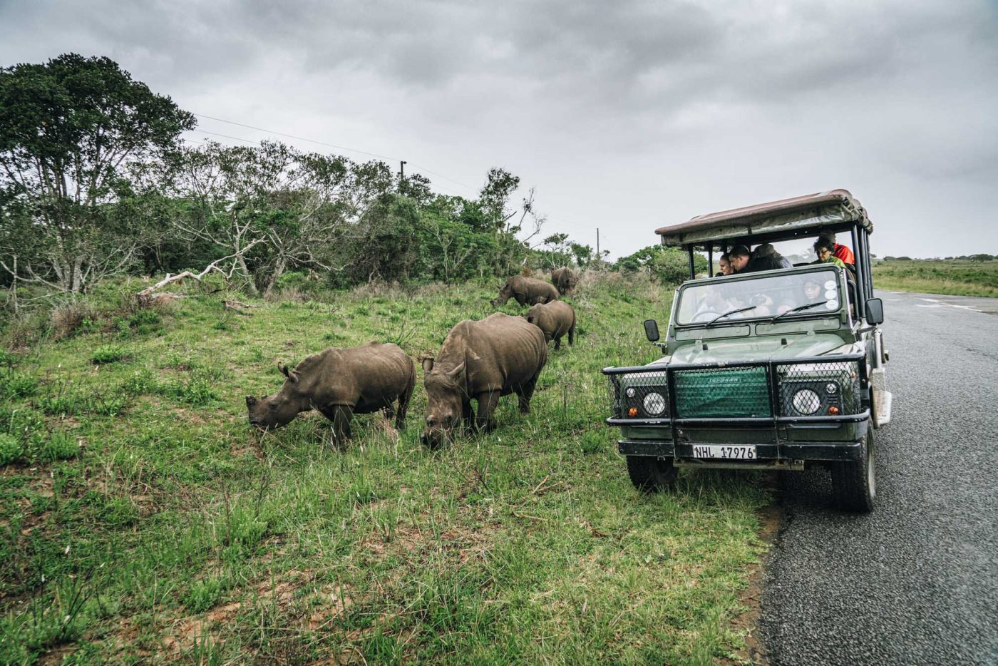 Rhino encounter in iSimangaliso National Park