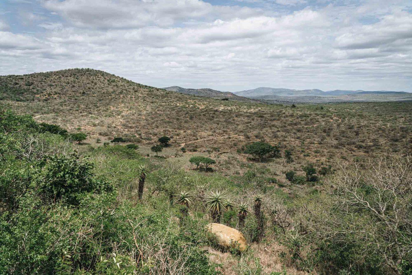 Sweeping views of Hluhluwe iMfolozi National Park