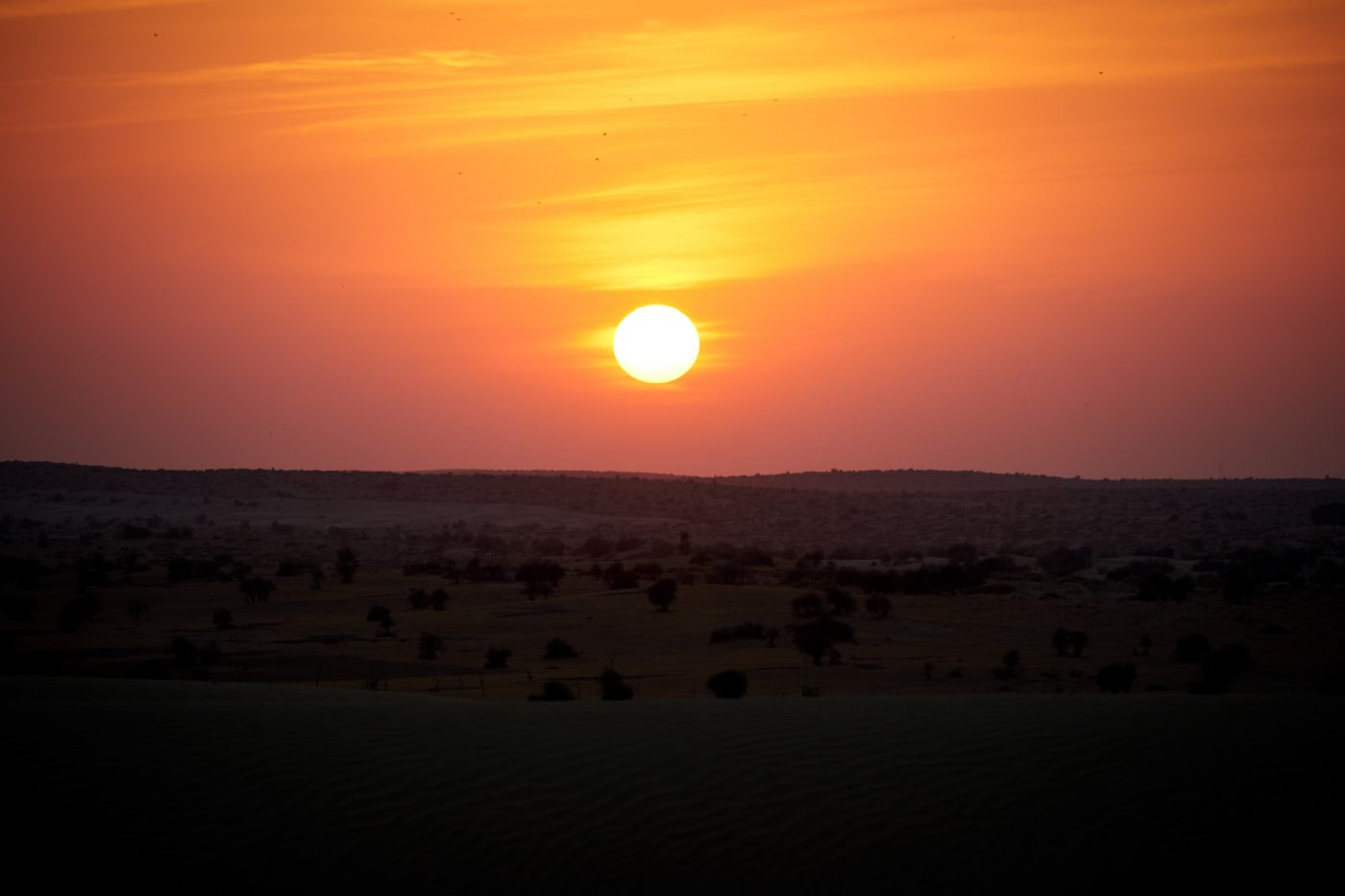 places to watch the sunset: Sunset Over The Thar Desert