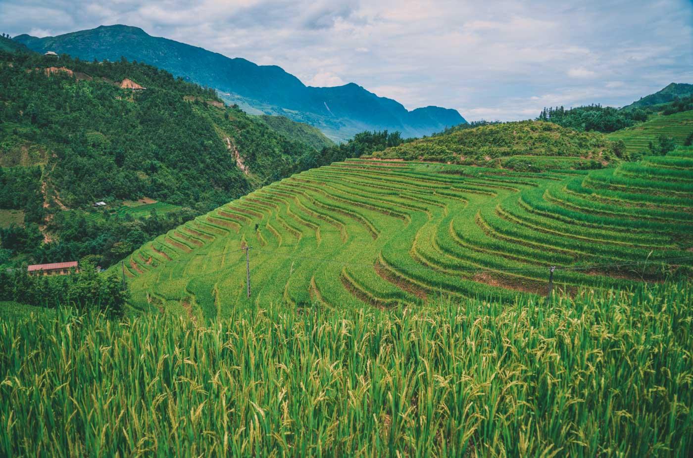 3 days trek Sapa Vietnam