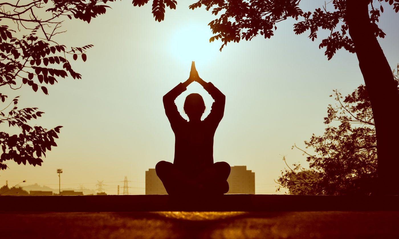 International Yogi Festival a meditation retreat in Rishikesh, India
