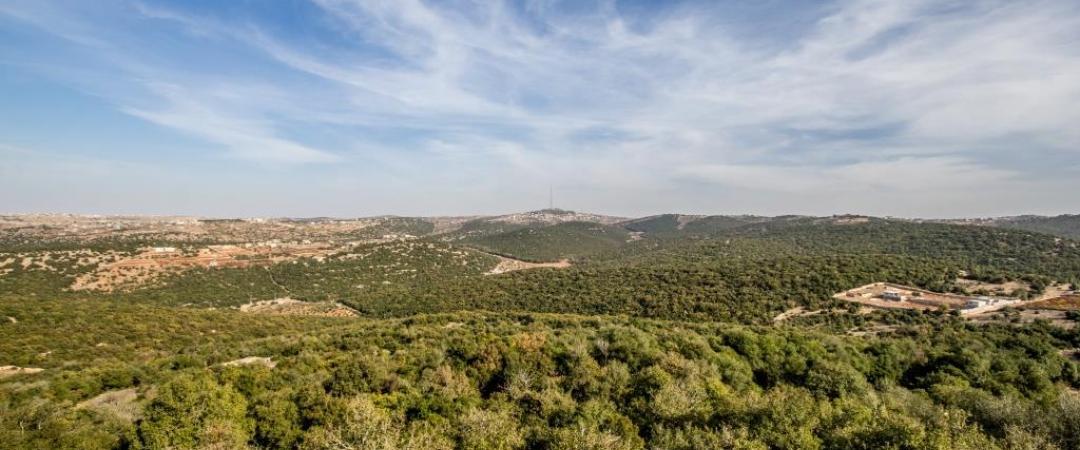 Ajloun Forest Reserve, Jordan