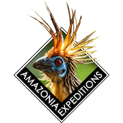 amazonia-expeditions-logo512