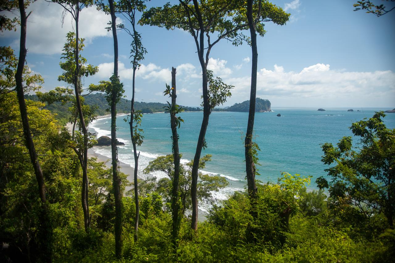 Eco Hotels in Manuel Antonio: Arenas Del Mar