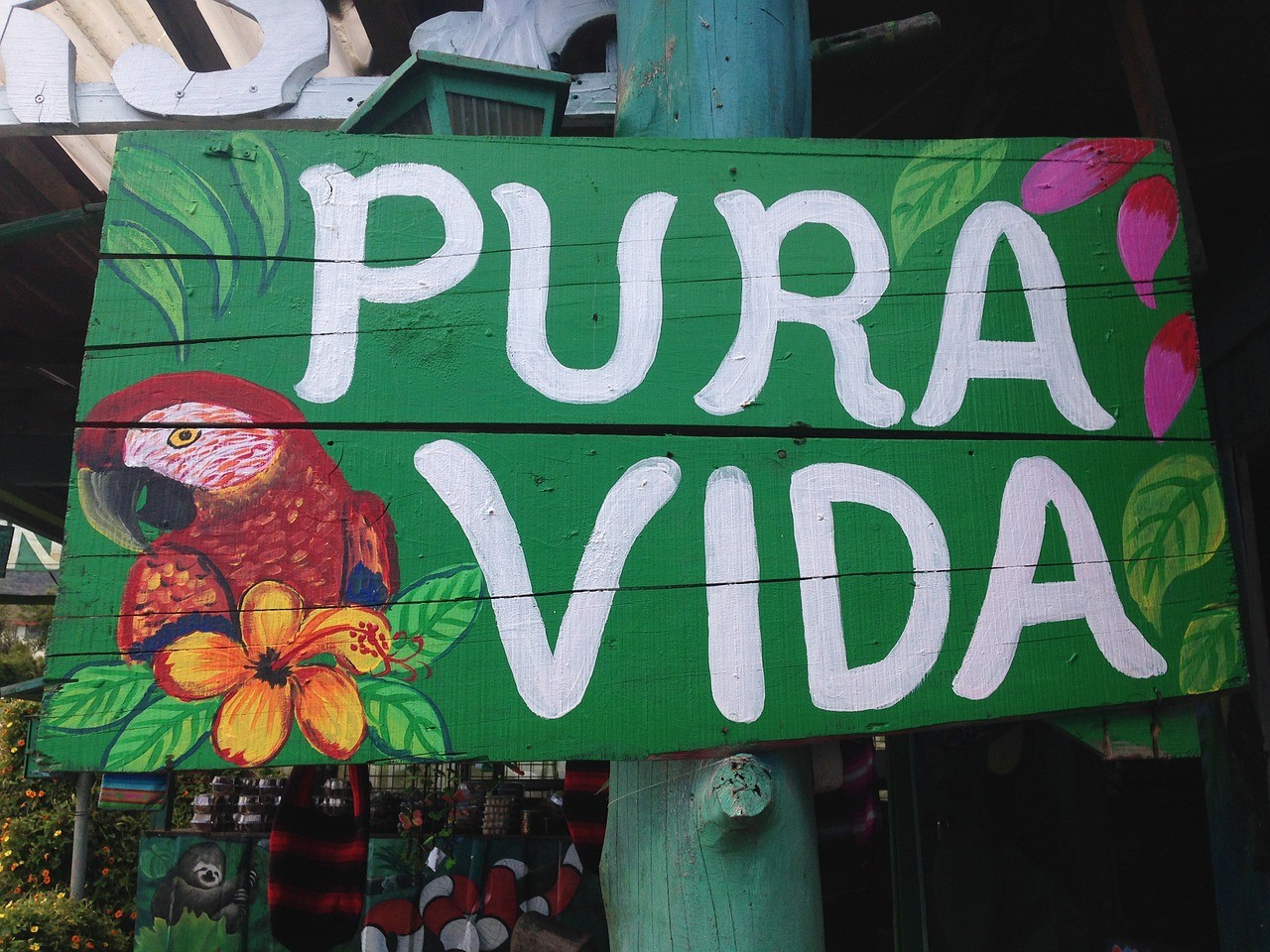 What does Pura Vida mean?