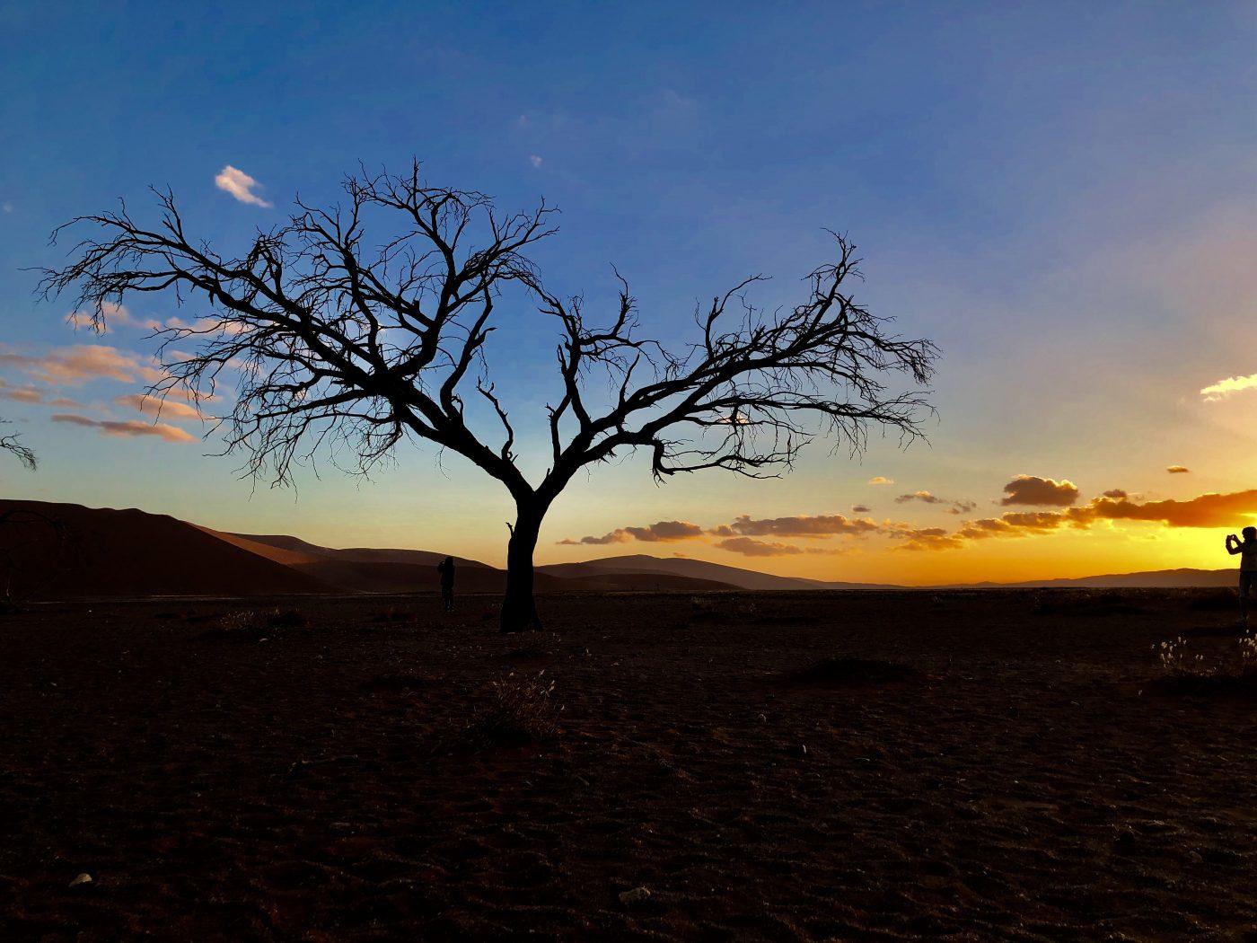Namibia's Namib-Naukluft National Park