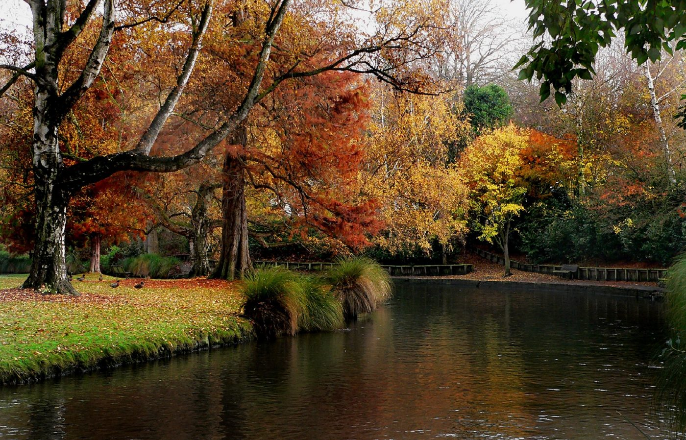 Things to do in New Zealand include the Botanic Gardens in Christchurch