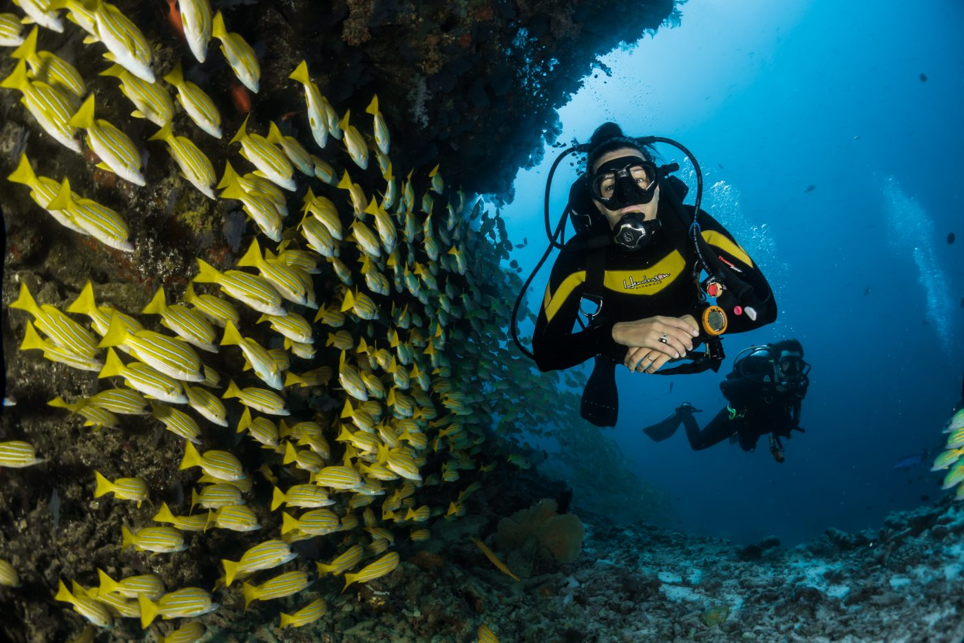 best diving in the caribbean